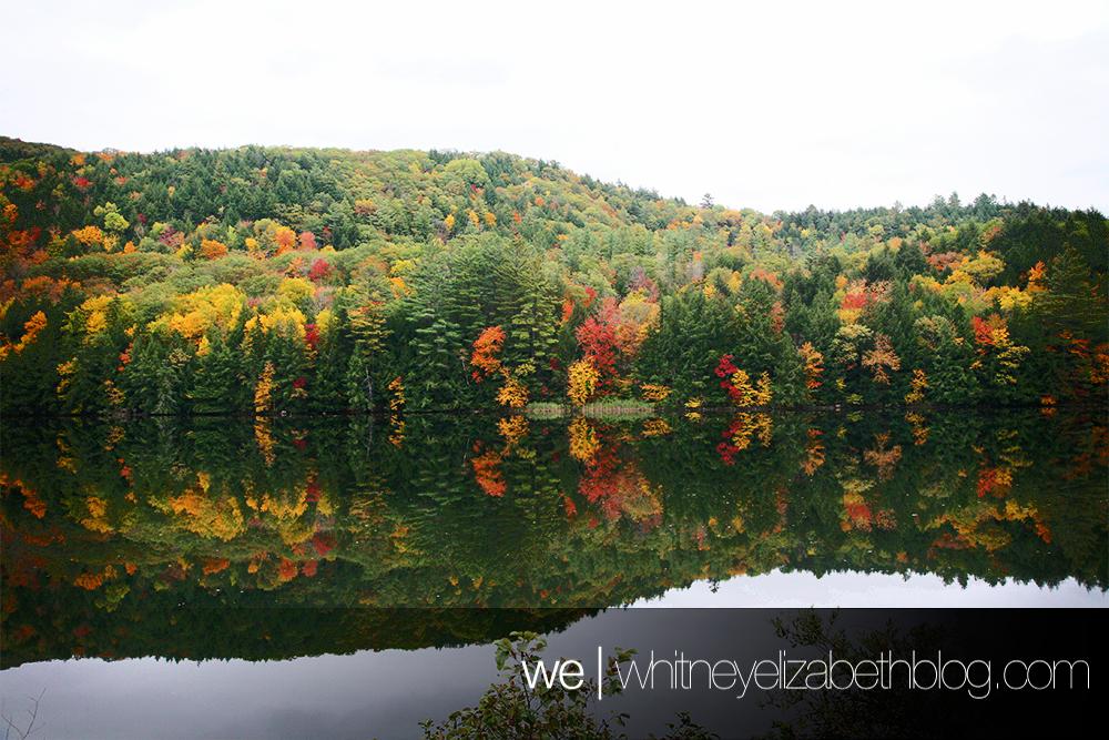 whitneyelizabethphotography_vermontleafpeeping_landscapes